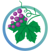 екстракт листя червоного винограду