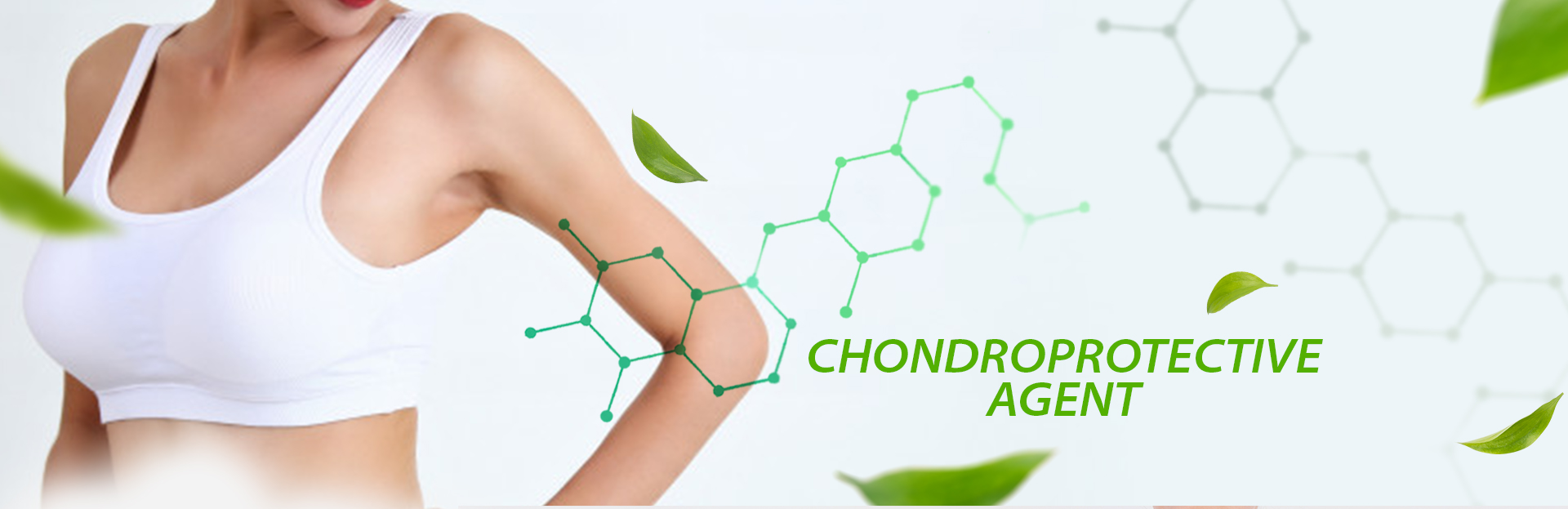 CHONDROPROTECTIVE AGENT